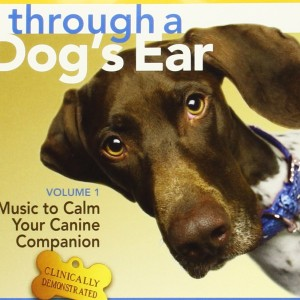 Music to Calm Your Canine Companion